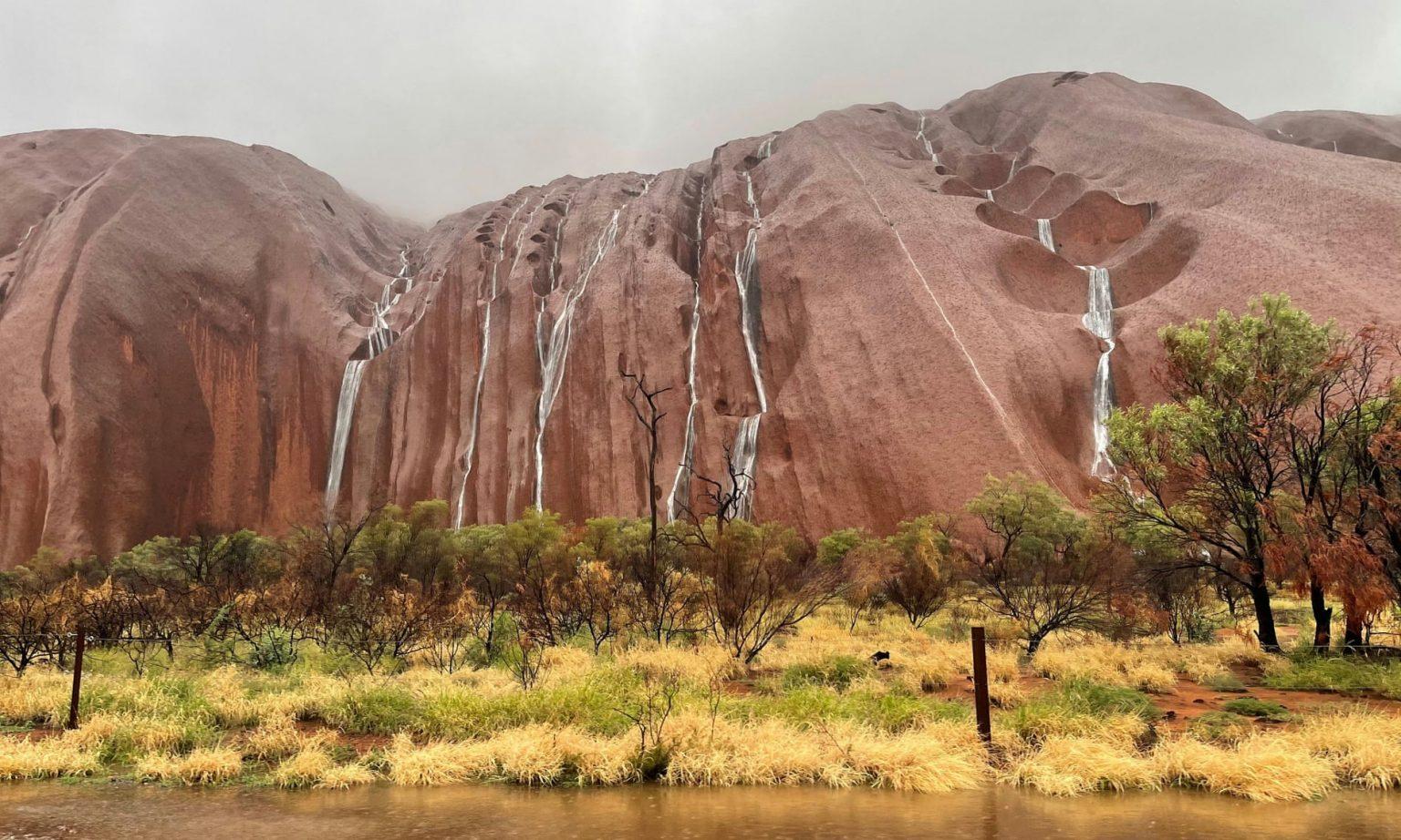 तस्वीरमा हेर्नुहोस् सय वर्षपछि अस्ट्रेलियामा देखिएको अद्भूत दृश्य, हेर्न पर्यटक जान पाएनन्